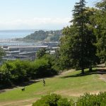 The Wonderful Parks Of Seattle